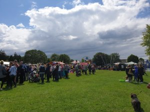 Photographs of Summer Fayre 2019