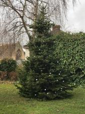 Help to decorate the Charlton Kings Christmas tree