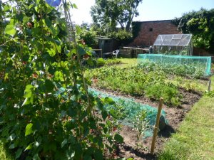 Allotments Committee Meeting - 7pm on Thursday 6th February 2020